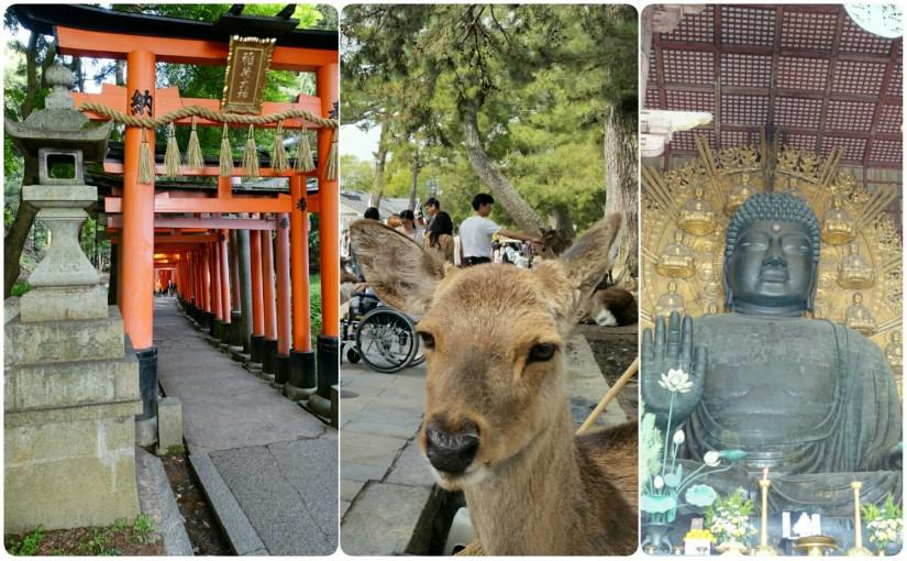 Nara & Kyoto Inari Schrein