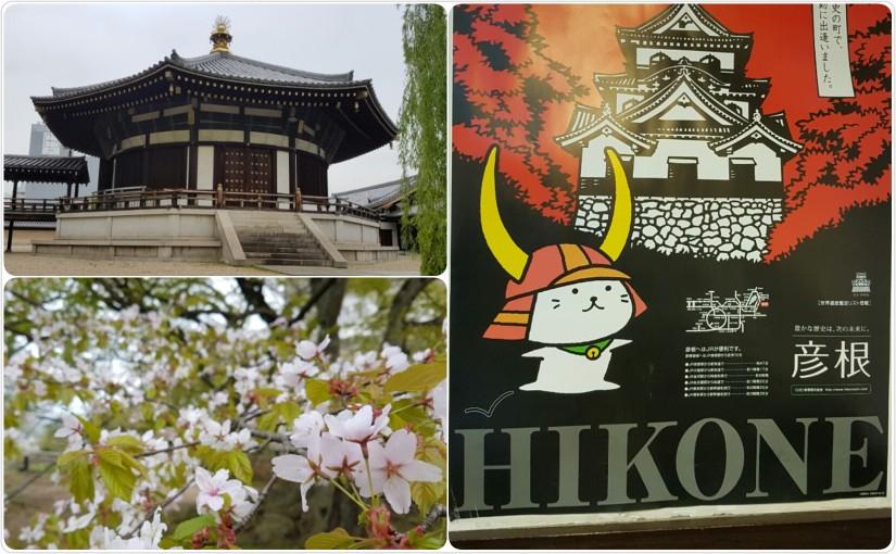 Osaka & Hikone