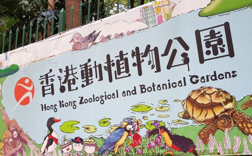 Märkte & Zoo
