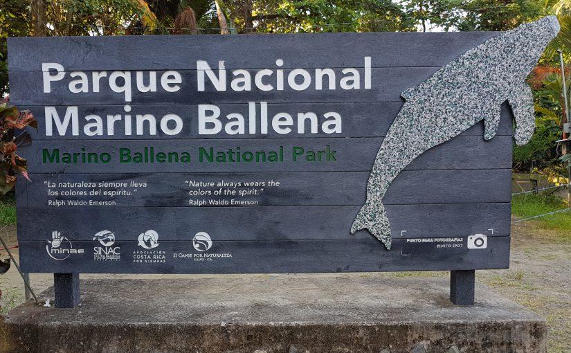 Marino Ballena Nationalpark – Ruhetag