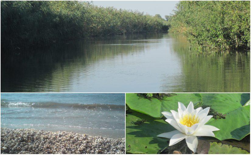 Donaudelta – Tag 1